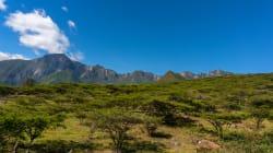 América Latina ante la oportunidad histórica de un tratado medioambiental