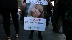 Un grupo de madres incansables logró que Argentina aprobara la marihuana