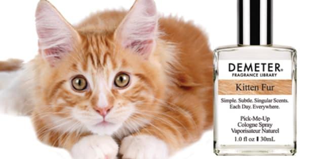 Déjà habitué à proposer des parfums à la pizza ou au popcorn, Demeter vient de commercialiser un parfum à l'odeur de chaton.