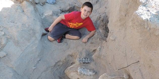 Cet enfant a découvert un fossile de stegomastodon né 1.199.991 ans avant lui