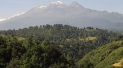 La Ley General de Biodiversidad y Ley General de Desarrollo Forestal así atentan a los pueblos