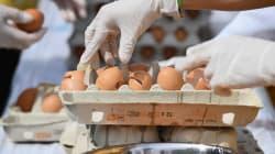 Un nuovo caso di uova al