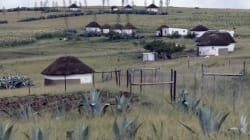 The Eastern Cape Is An Agricultural Bright