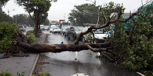 Traffic jams caused by fallen trees during a storm in Durban, South Africa October 10, 2017. REUTERS/Rogan Ward