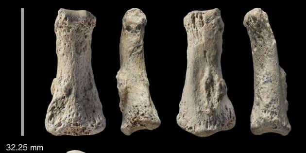 Ce doigt  vieux de 85.000 ans permet de mieux comprendre l'expansion d'Homo sapiens dans le monde