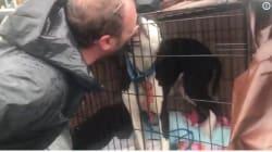 Esta perrita no deja de 'besar' a quienes la salvaron del huracán