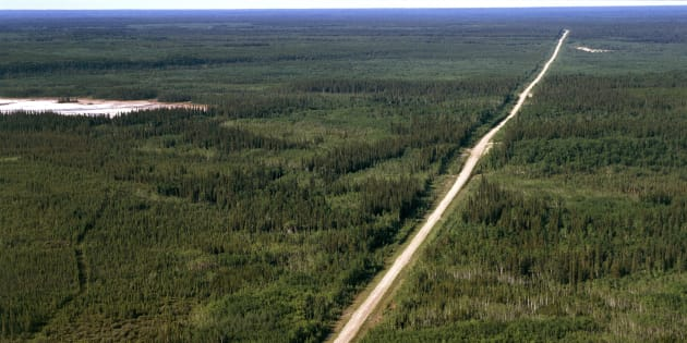 Aerial view of Highway 5 in a segment of Wood Buffalo National Park in the Northwest Territories.