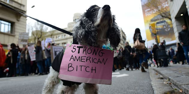 A dog attending a march in Barcelona, held in solidarity of the Women's March on Washington.