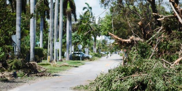 Huit morts en Floride après des coupures électriques provoquées par Irma