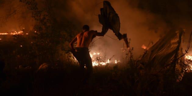 Des incendies en Espagne et au Portugal font des dizaines de morts