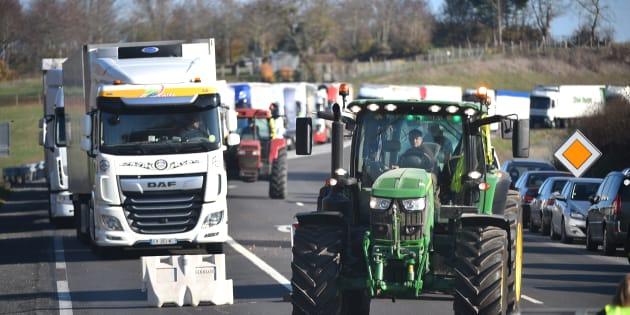 Des mesures de la loi Alimentation reportées, les agriculteurs prévoient de manifester (Photo d'illustration prise le 19 novembre 2018).