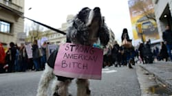 These Adorable Pets Are Supporting The Women's