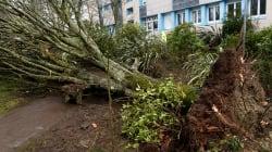 Tempête Zeus: deux morts et encore 62.000 foyers privés