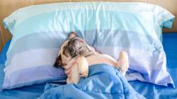 ¿Por qué algunas personas necesitan dormir más que