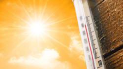 L'étude qui tombe à pic pour comprendre le lien entre cette canicule et le réchauffement