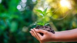 10 cosas que puedes hacer para ayudar al planeta este