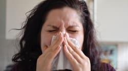 Pollen : la saison des allergies toujours plus