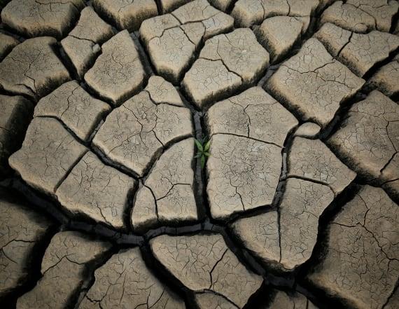 Drought-hit Cape Town dreads 'day zero'