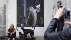 9 cose da non perdere della Biennale di Venezia (secondo Luca Massimo