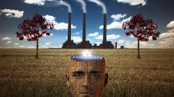 BLOG - 7 manières dont la pollution attaque votre