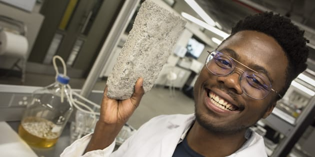 """Los tres primeros """"bioladrillos"""" realizados a partir de orina humana son unos bloques grises con una apariencia y peso similares a los ladrillos normales, y de material parecido a la caliza"""