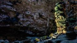 Le plus grand écosystème microbien du monde découvert sous la croûte