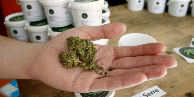 Per il consiglio superiore di Sanità l'erba legale potrebbe essere pericolosa