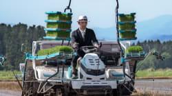 Au Japon, les plombiers, éboueurs et riziculteurs portent des