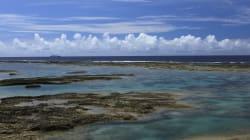 【いきものトークカフェ】南西諸島の生きものたちの未来 ~人による利用と影響 開催報告