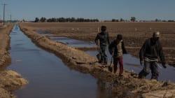 El sinsentido de la explotación del agua del que se acusa a Constellation Brands en una región con sequía
