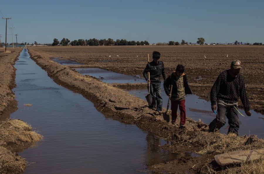 Ejidatarios y ambientalistas han denunciado que la empresa Constellation Brands solo traerá más escasez de agua en la región de Baja California, el 9 de marzo de 2018.