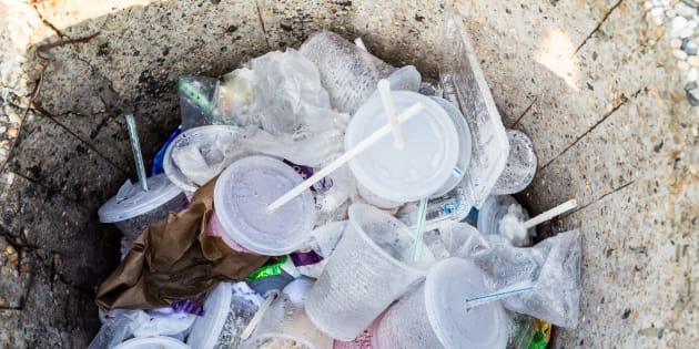 La guerre aux pailles en plastique est déclarée
