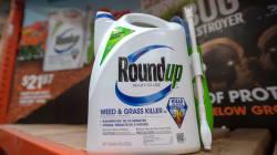 Glyphosate: Bayer dévisse de 12% en