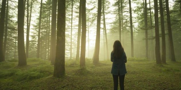 Forestier, voilà ce que j'aimerais que chacun sache sur le rôle de l'homme dans nos forêts.