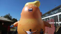 Ce bébé Trump géant pourra survoler Londres lors de la visite du président