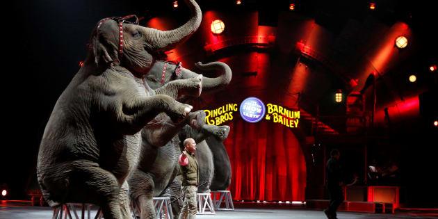 Une représentation du cirque Barnum en Pennsylvanie le 30 avril 2016.