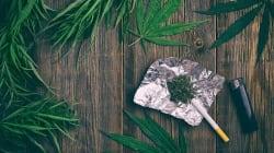Cómo hablar de marihuana con tus