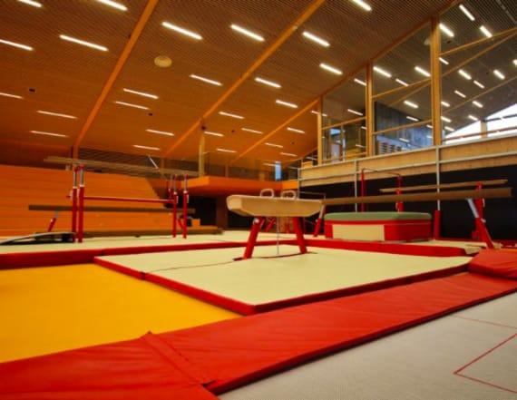 Collegiate gymnast, 20, dies after training accident