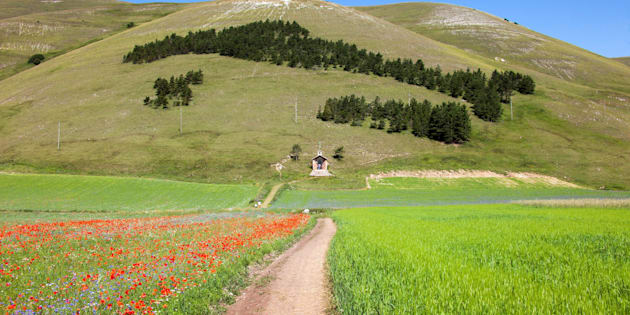 Castelluccio Di Norcia, Monti Sibillini, Umbria (Algol/AGF/UIG via Getty Images)