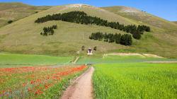 Sette ragioni per innamorarsi dei Monti
