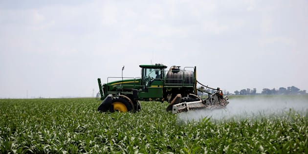 A worker uses a tractor to spray a field of crops during crop-eating armyworm invasion at a farm in Settlers, northern province of Limpopo, South Africa, February 8, 2017.