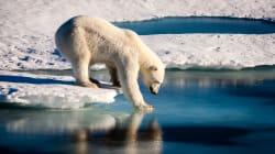 2018 a été la deuxième année la plus chaude enregistrée en Arctique depuis