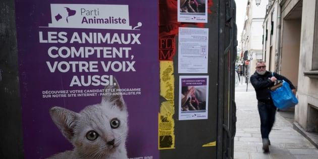 En dépassant le score symbolique de 1% dans plus de 50 circonscriptions, le Parti Animaliste va toucher des aides publiques.