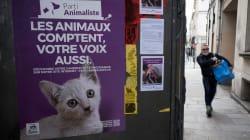Ce que le Parti Animaliste va pouvoir faire de ses 1% aux