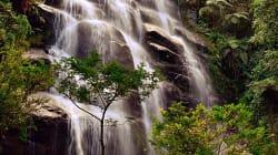 Por que visitar o Parque Nacional do