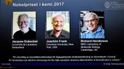 Trois chercheurs en microscopie héritent du prix Nobel de
