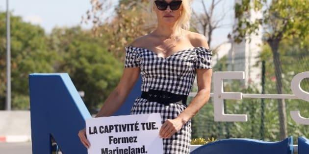 Devant le Marineland d'Antibes, Pamela Anderson déploie une banderole réclamant sa fermeture
