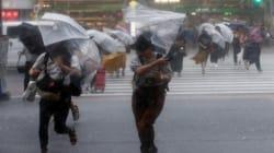 Après des inondations et une canicule meurtrières, le Japon balayé par une violente