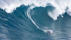 Une vague de presque 24 m au sud de la Nouvelle-Zélande, bonne nouvelle pour les surfeurs