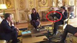 Il cane di Macron ha interrotto la riunione di gabinetto nel modo più imbarazzante che potete
